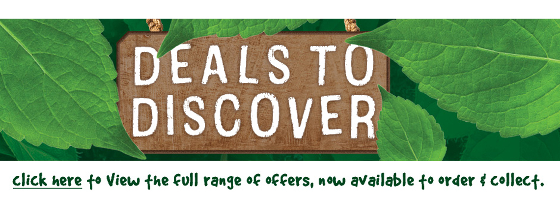 Deals to Discover